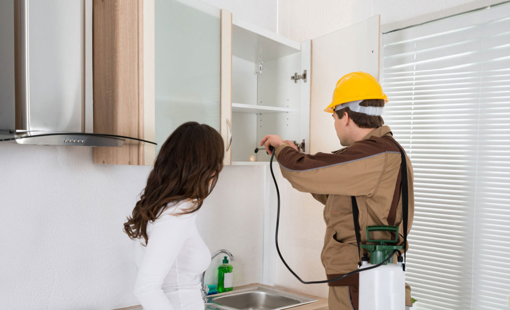 Benefits Of Pest Control For Homeowners