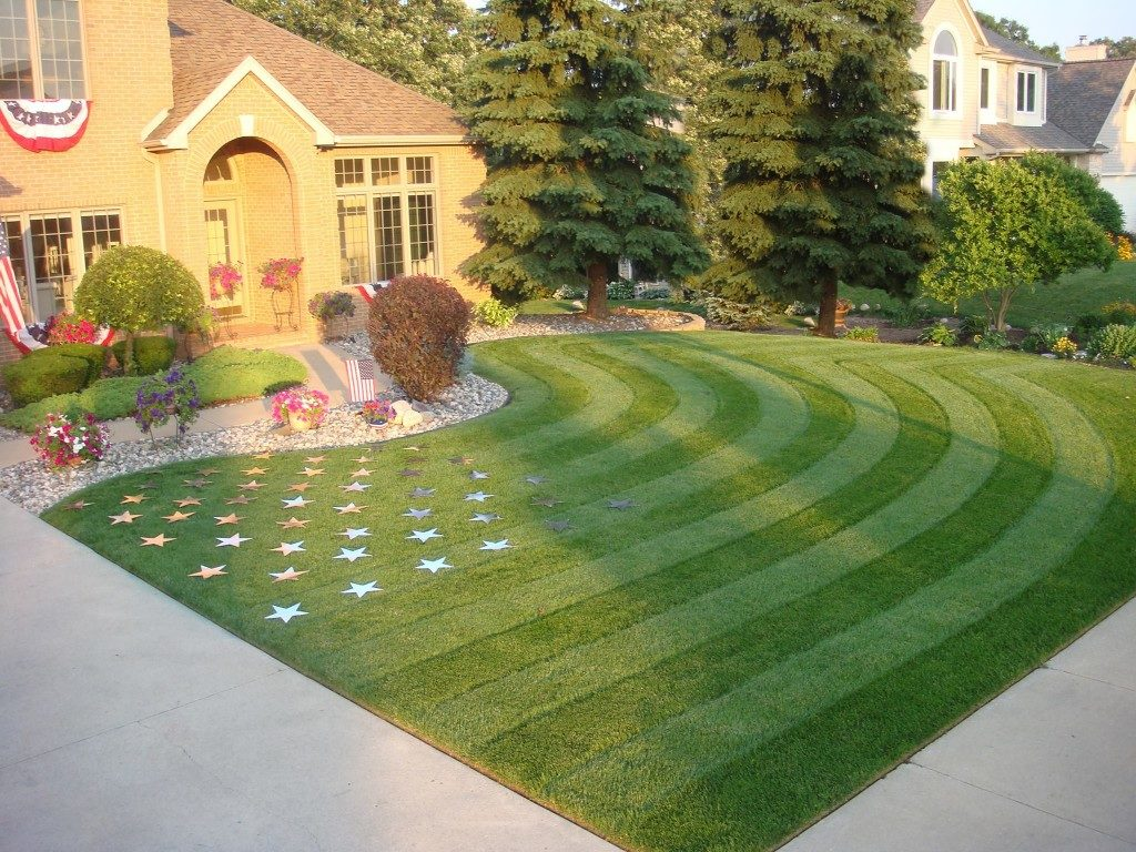Considerations To Make When Choosing Fake Grass To Install In Your Home In San Diego