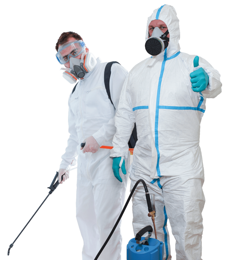 Pest Control Service and its Benefits